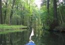2012-paddeltour-spree-01-09-12-16-48-25