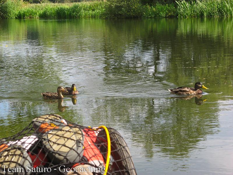 2012-paddeltour-spree-04-09-12-14-13-59