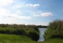 2012-paddeltour-spree-04-09-12-16-08-49