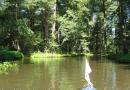 2012-paddeltour-spree-02-09-12-13-20-29