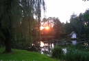 2012-paddeltour-spree-02-09-12-19-18-50