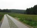 steigerwald-18-ein-ganz-normaler-wandercache-15082010-11-15-58.jpg