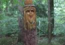steigerwald-18-ein-ganz-normaler-wandercache-15082010-12-03-13.jpg