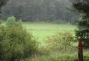 steigerwald-18-ein-ganz-normaler-wandercache-15082010-13-08-04.jpg