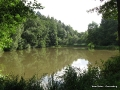 steigerwald-18-ein-ganz-normaler-wandercache-15082010-16-34-37.jpg