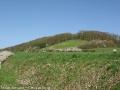 steigerwald-19-alle-macht-den-multis-100411-10-25-38.jpg