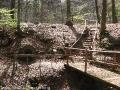 steigerwald-19-alle-macht-den-multis-100411-12-38-58.jpg