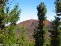 teneriffa-2010-21102010-10-24-31.jpg