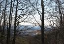 urwiese-und-huthaeuschen-25-03-12-16-16-45