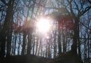 urwiese-und-huthaeuschen-25-03-12-16-45-41